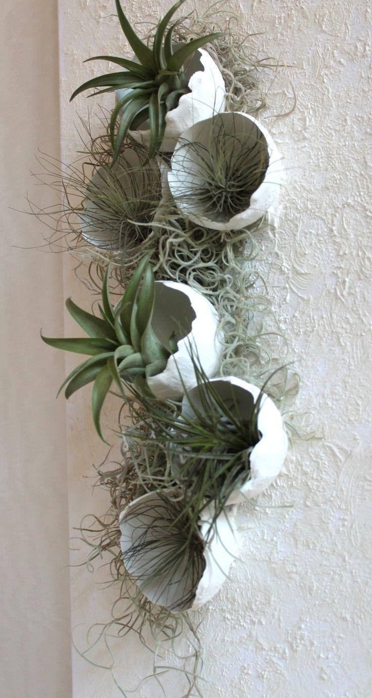 Diy Pflanzenbild mit Betonschalen und Tillandsien