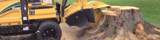Tree lopping specialist perth - Down under stump grinding provides tree removal Perth and tree loppers Perth service.we are also providing tree cutters Perth service from last 10 years.