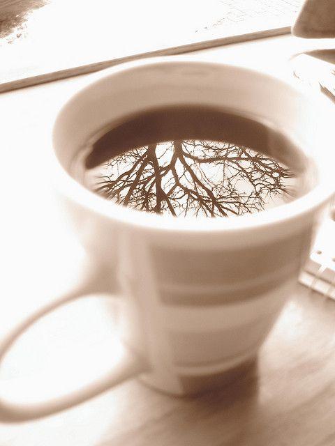 Aaron Glemboski, cup of coffee, reflection