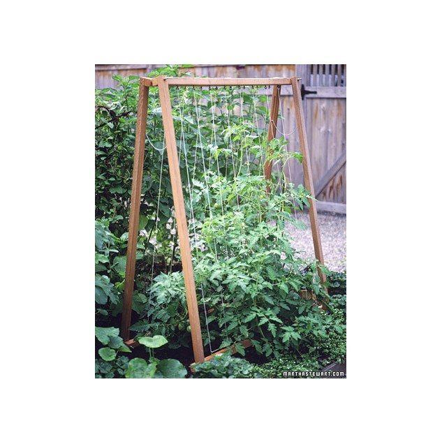 87 best trellis images on pinterest for Vegetable garden trellis designs