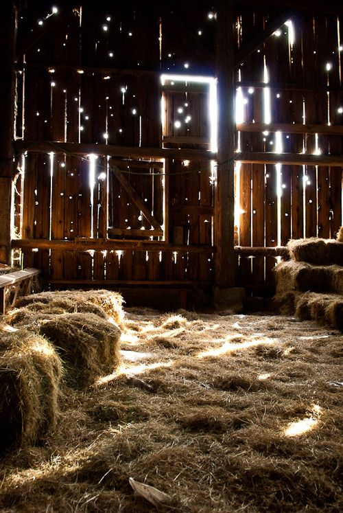 I love the way light shines through old barns..