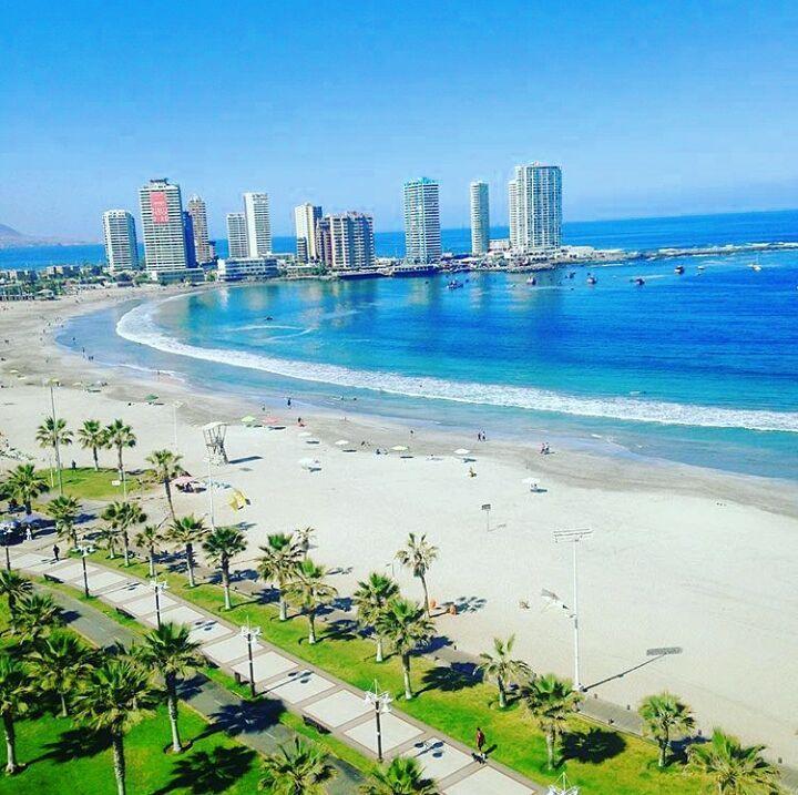 Playa Cavancha, Iquique - Chile 🇨🇱 Si realmente eres como el caribe  👌☀#CaribeIquiqueño #Iquique #Chile 🌊🌊🌊 🌴🌴🌴 #cavab… | Santiago de  chile, Playa, Paisajes