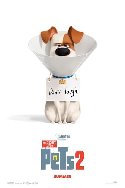 (((Voir)))The Secret Life of Pets 2 en