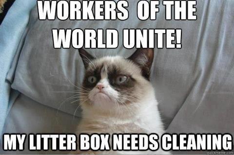 Happy Labor Day quotes quote grumpy cat labor day happy labor day labor day…