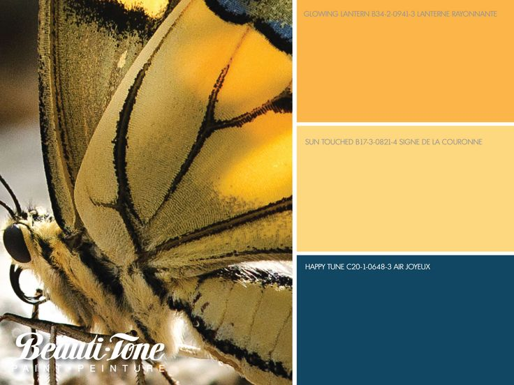 Let your imagination be inspired by the colourful #design details of nature. Warm sun infused yellows complemented with a cool shade of blue creates #BeautiTone's spectacular spring palette.