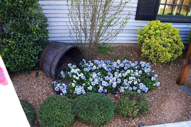 Rewelacyjny pomysł na kompozycję w ogrodzie. Wygląda genialnie  i przyciąga wzrok!