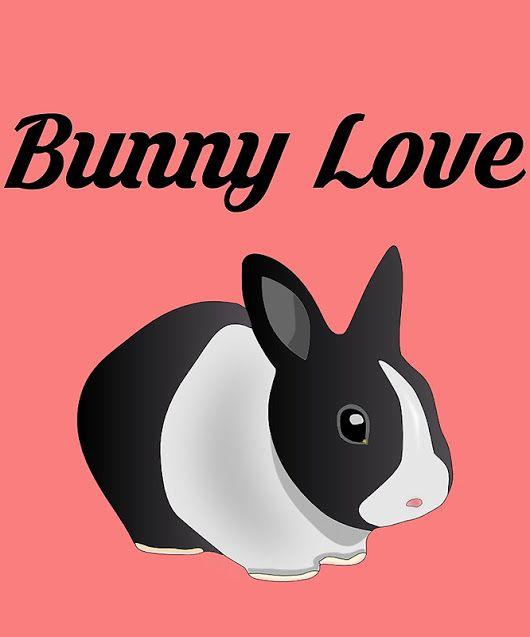 'Bunny Love'  by Bennellaris
