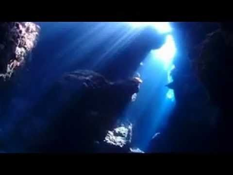 2014 京都水族館「3D プロジェクションマッピング」 大水槽/ミズクラゲ水槽/鴨川水槽 - YouTube