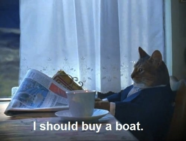 I should buy a boat.Thoughts, Catmemes, Funny Cat, Boats, Fat Cat, Businesscat, Kitty, Business Cat, Cat Memes