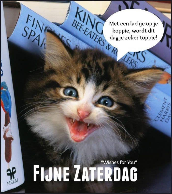 Afbeelding van http://img1.bestekrabbels.nl/bk/022/046.jpg.