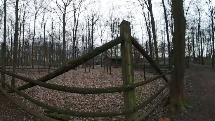 Unterwegs  im Wildpark mit der Gear 360 Grad