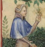 14th century lady - capelet!
