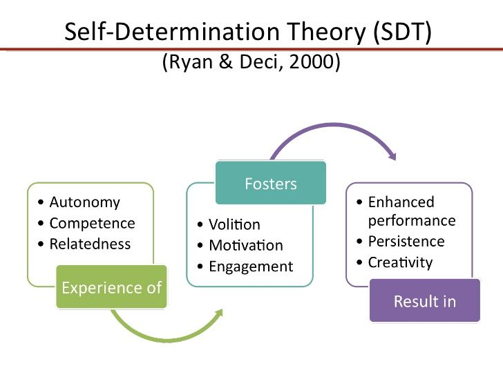 self determination theory essay Self-determination theory – how do you feel psyc3520 - intro to social psychology social psychological theory april, 2014 what is the self-determination.