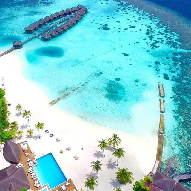 Maafushivaru Island Resort, Maldives ⠀ ⠀ ⠀ Photography via @maafushivaru_mv