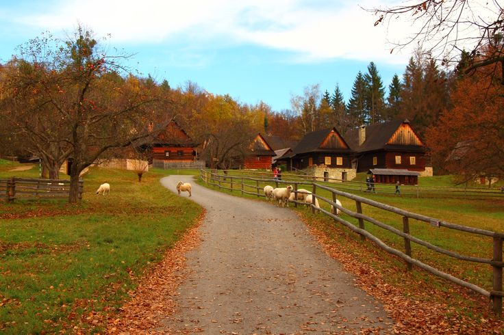 In Beskydy mountains (North Moravia), Czechia