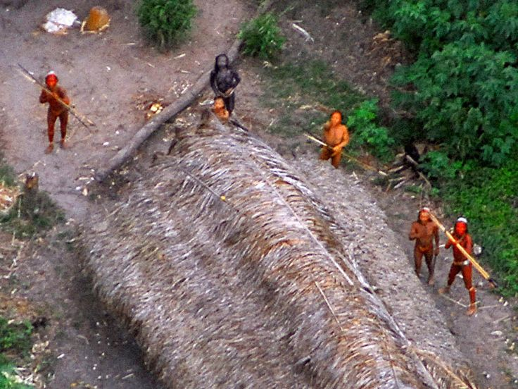 They were members of an uncontacted tribe gathering eggs along the river in a remote part of the Amazon. Then, it appears, they raninto gold miners.
