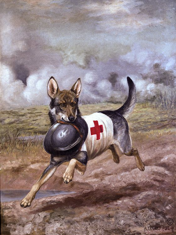 This Alexander Pope painting depicts a World War I Red Cross dog carrying the helmet of a wounded French soldier in the midst of a gas barrage.