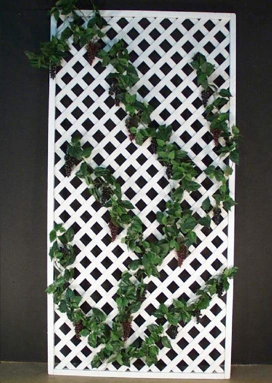 White Lattice Fence Idea For Climbing Plants