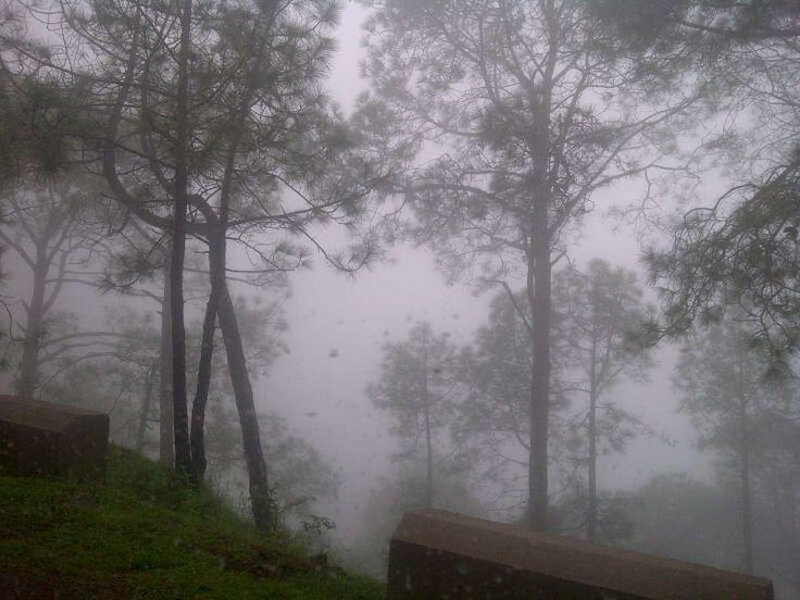 Nature's best, Morning View  #Nature #Travel #Trip #WeekendTrip #BestWeekendTrip #Photography