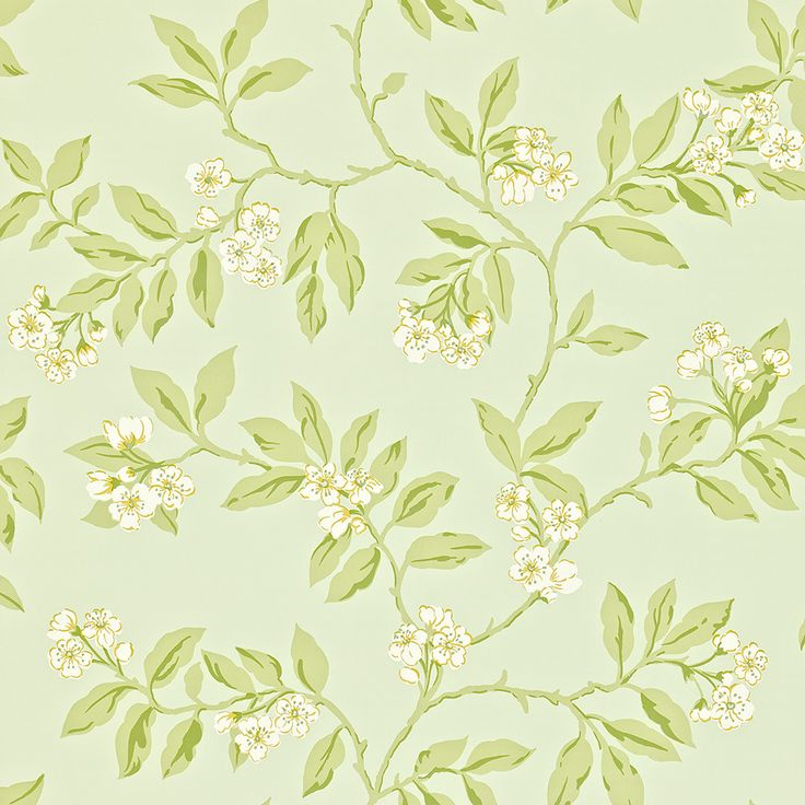 Modern/Traditional room. Mixed with white for Bright, Breezy room. Sanderson Blossom Bough Wallpaper - 211993 a£39 per rollt Amara