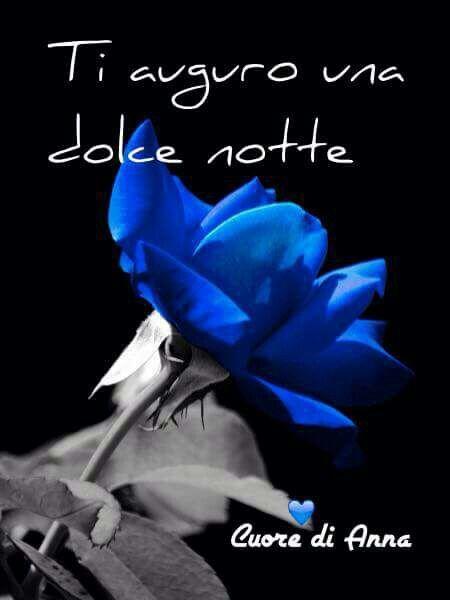 Buonanotte Blue Azul Love Buonanotte Buongiorno Notte