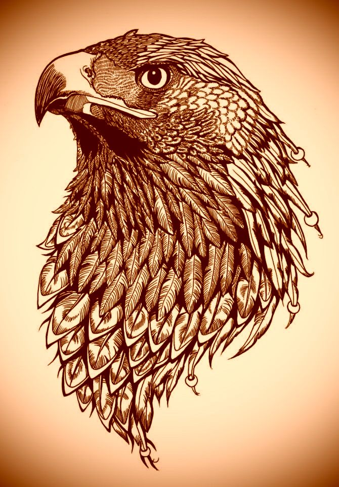 активного картинки эскизы тату орла напрасно