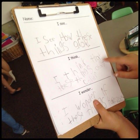 Inquiring Minds: Mrs. Myers' Kindergarten: Caterpillars, Worms, Poetry and…