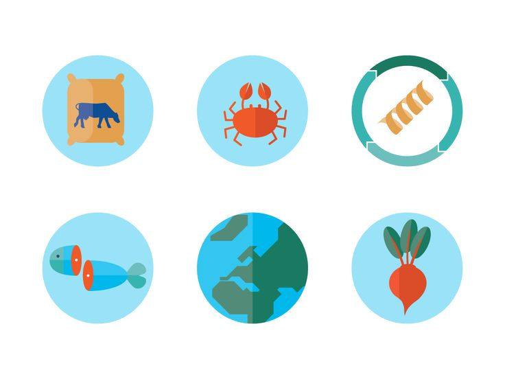 Science infographics about protein & bioenergy #infographic #data #science #illustration #studiolakmoes #icondesign #icon #flatdesign