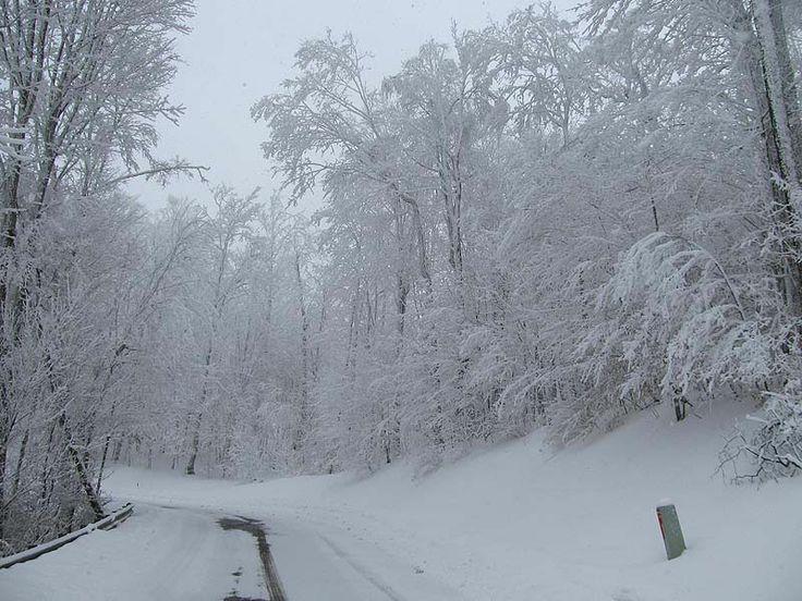 Wolf Ridge Ski Resort in North Carolina  Hertz NeverLost December 2014