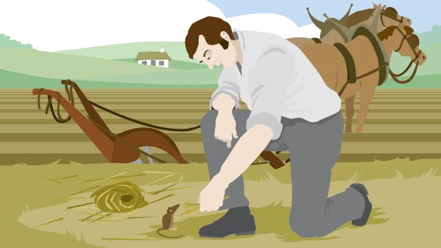 Robert Burns disturbs the home of a mouse while ploughing his field
