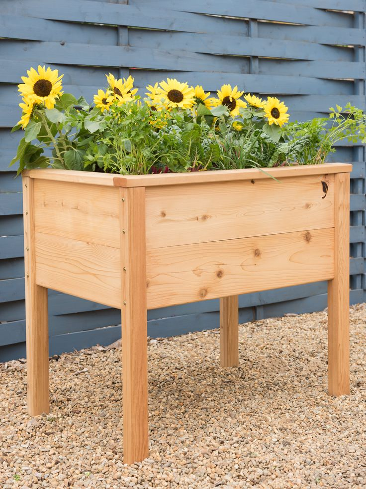 CedarLast Elevated Planter Box, 2' x 3'