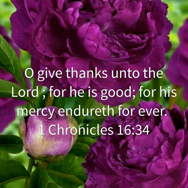 <3 <3 1 Chronicles 16:3 (KJV) 34 O give thanks unto the Lord; for he is good; for his mercy endureth for ever.