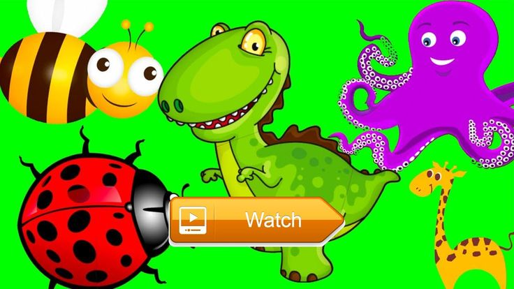 Baby Learn About Sea Animal Farm Animals Jungle Animals Play Puzzles Educational Game For Children  Baby Learn About Sea Animal Farm Animals Jungle Animals Play Puzzles Educational Game For Children Subscribe Now Our  on Pet Lovers