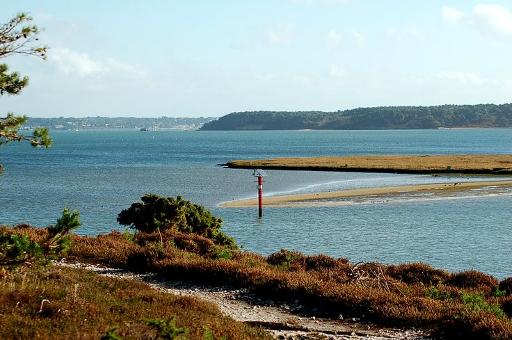 Poole Bay from Arne