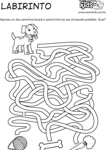 Animais Domésticos Labirinto