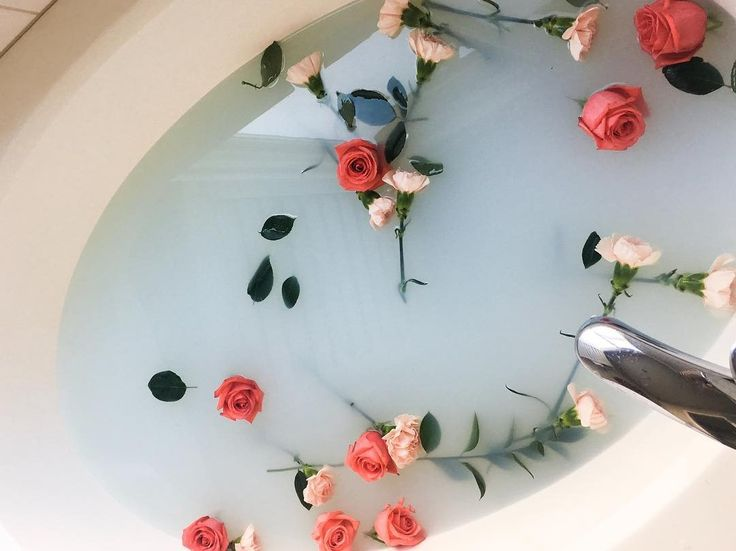 """127 Likes, 6 Comments - Erin (@erinnicol_) on Instagram: """"I'm so excited to edit these milk bath pictures with @itsnicoleexp and miss Norah"""""""