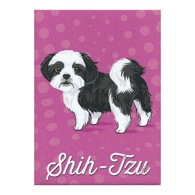Shih Tzu Refrigerator Magnet   Doggie Drawings   Dog Breeds In Home U0026 Garden  | EBay