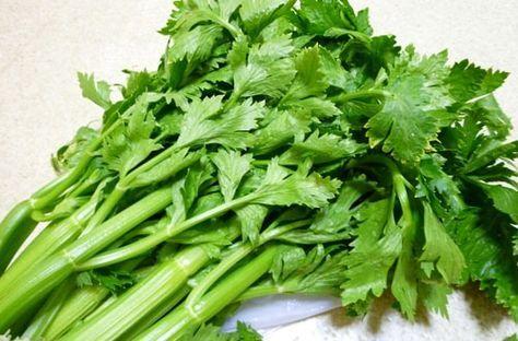 セロリといえば普通茎のところを食べますが、実はセロリの優れた薬効は茎よりも緑黄色野菜としての葉の部分に栄養が多いのです。葉っぱを含めたセロリには血行促進、疲労やストレスの緩和、便秘、美肌などの効能があり、ハーブとしてスープの香り付けなどにも利用します。#健康#Food#料理#レシピ#Recipe