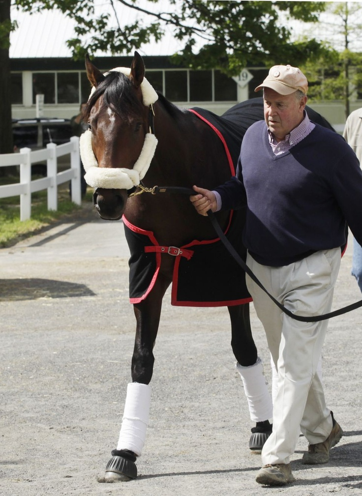 Orb arrives at Pimlico Race Track ... ready to win the Preakness Stakes on Saturday.