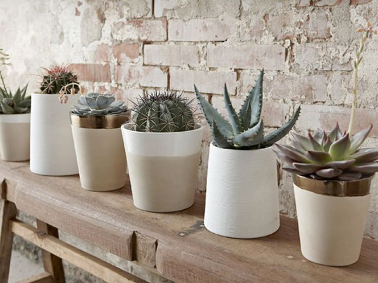 #home #decor #decord #inspiration #design #scandinavian #pots #cactus