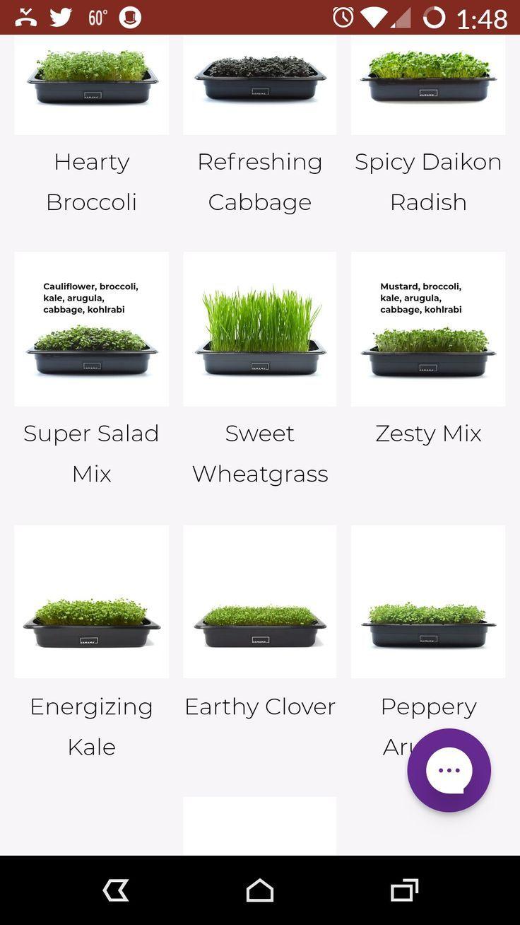 Grow nutritious greens yearround. in 2020 Microgreens