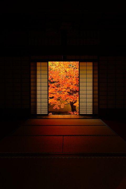 Unryu-in temple, Kyoto, Japan 雲龍院 京都