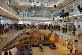 Exhibition: Muse, Museo delle Scienze, Trento, 2013