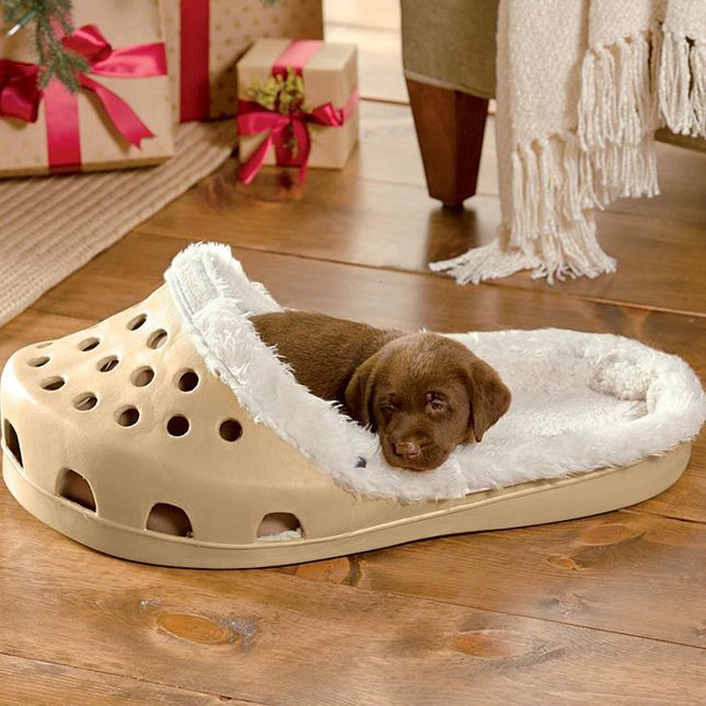 How Amazing Is This Croc Shoe Dog Bed? ❤ LUV IT! I hope it comes with the chocolate lab puppy! | via Brit + Co.