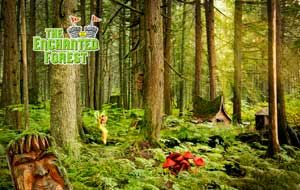The Enchanted Forest is a magical place where visitors can see, touch and step into the homes of fairytale heroes, villains and creatures that hold so many memories for all of us! It is located in one of the BC's beautiful old growth forests in Canada's Monashee mountains located midway between Revelstoke and Sicamous on the Trans Canada Highway.