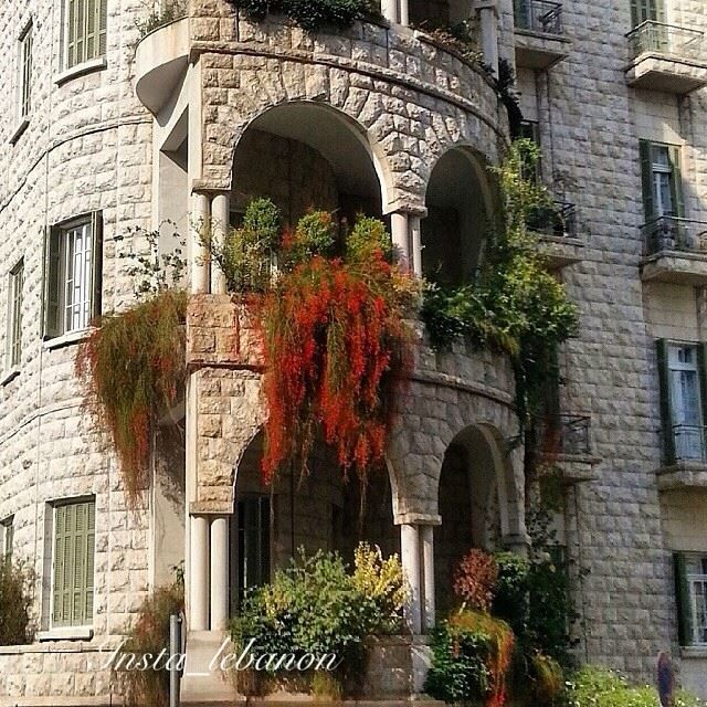 Good Morning dear followers, with this lovely  pic  from  Beirut Lebanon