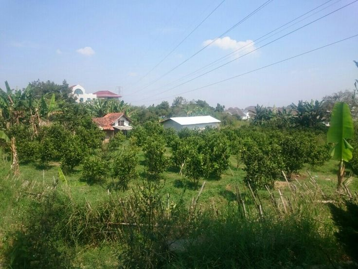 pt-dupamesh.indonetwork.co.id Bandung di Jawa Barat