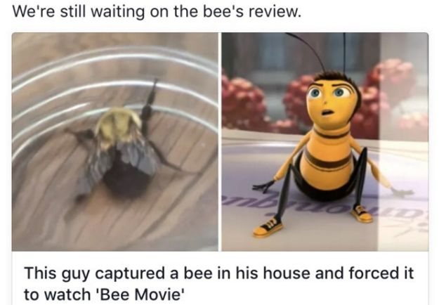 "This tiny film critic. | 27 ""Bee Movie"" Jokes That Are Just Too Fucking Much"
