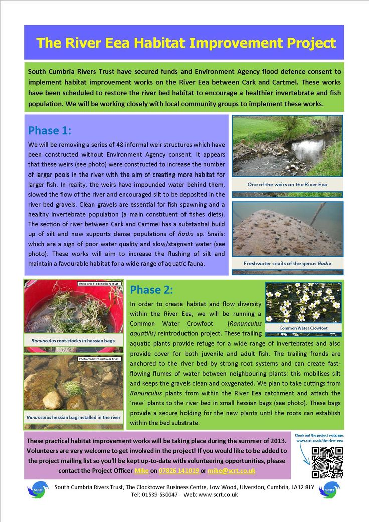 South Cumbria Rivers Trust - The River Eea Habitat Improvement Project