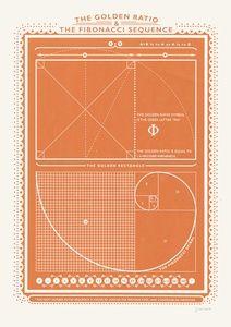 Fibonacci | Sanders of Oxford